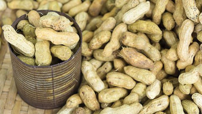 Ternyata Konsumsi Kacang Tanah Bisa Keracunan, Begini Cara Mengatasinya