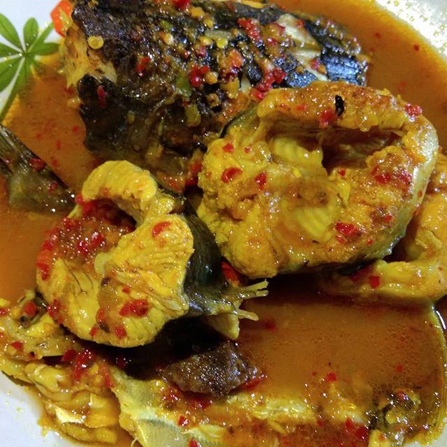 Berkunjung Ke Riau , Catat Daftar Makanan Khas Berikut Ini