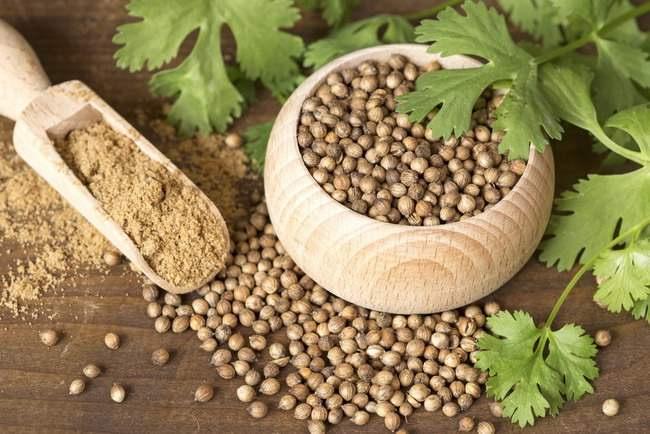 Ketumbar Bukan Cuma Bisa Dijadikan Bumbu Makanan Tapi Juga Bisa Menyembuhkan Penyakit